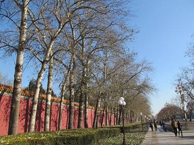 北京再訪2015_1