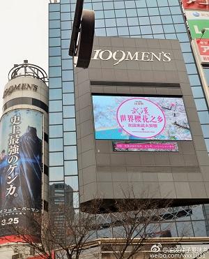 渋谷の屋外広告
