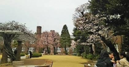 春・爛漫2016_6