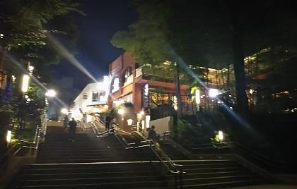 2016盛夏から晩秋へ_1