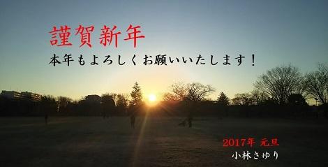 謹賀新年_170101