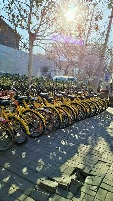 シェア自転車4