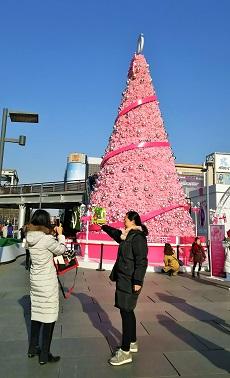 北京・西単北大街のツリー
