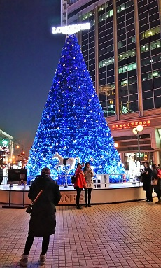北京・崇文門のツリー