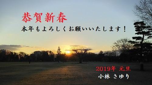 恭賀新春2019