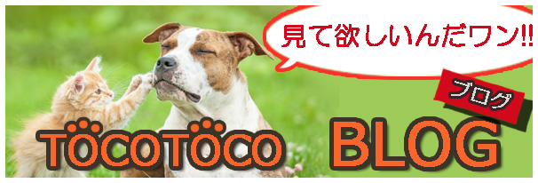 tocotocoブログバナー