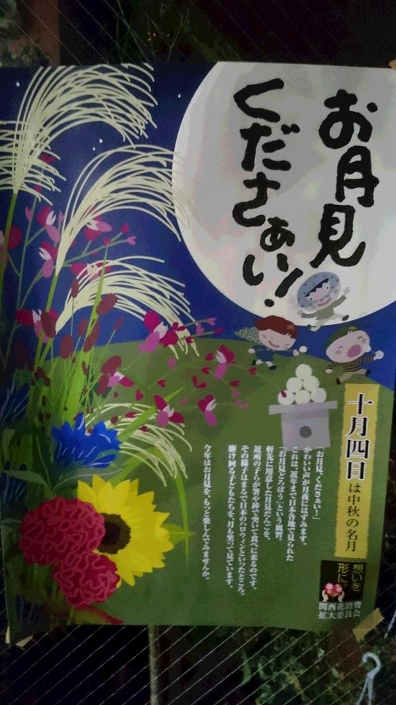 DSC_4660.JPG