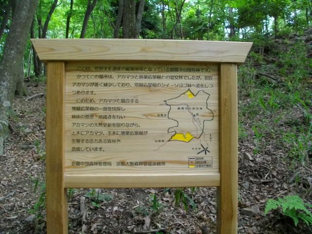 大文字山2