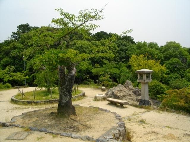 船岡山10