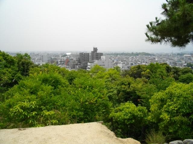 船岡山11