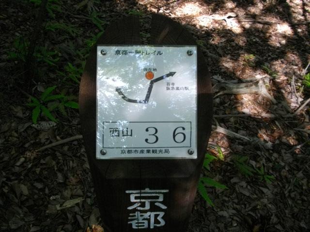 松尾山19
