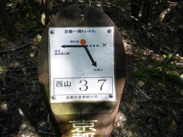 松尾山20