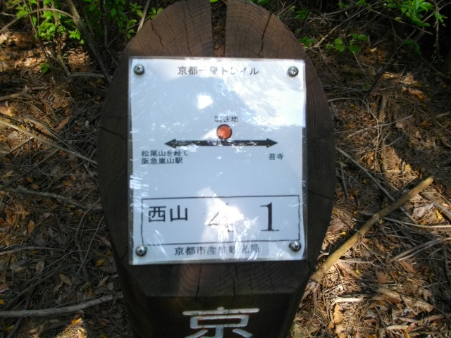 松尾山24