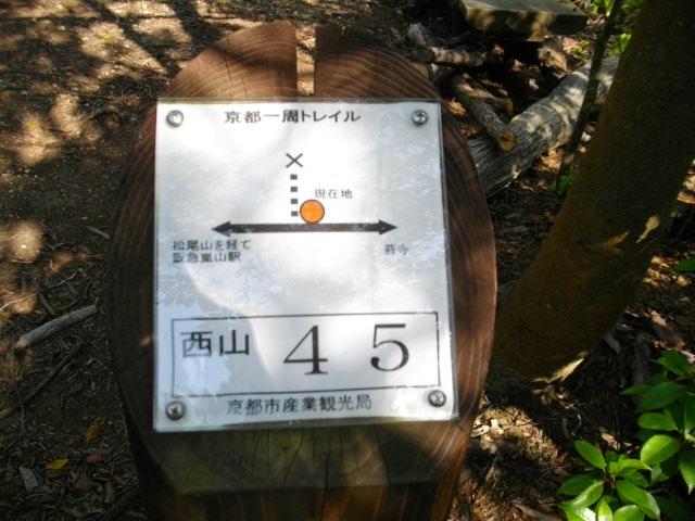 松尾山29