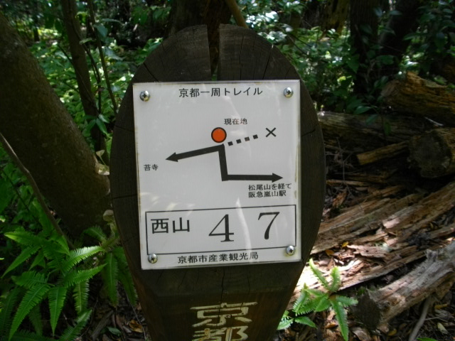松尾山31
