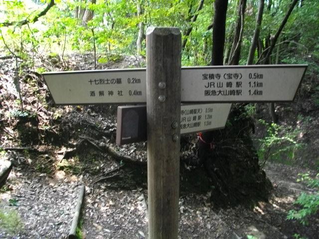 天王山12