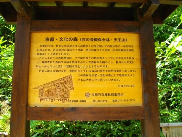 天王山33