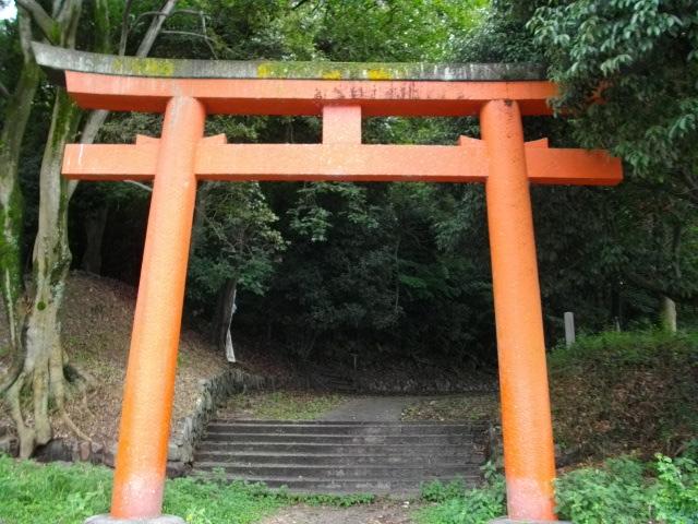 吉田山21