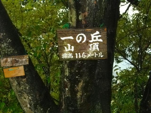 双ヶ丘11