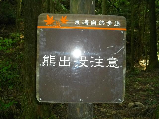 ポンポン山14