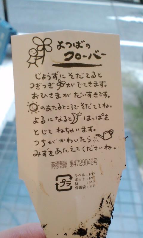 100326_1530~01.jpg