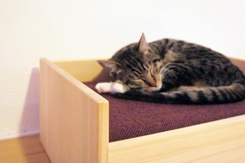 猫のソファ5