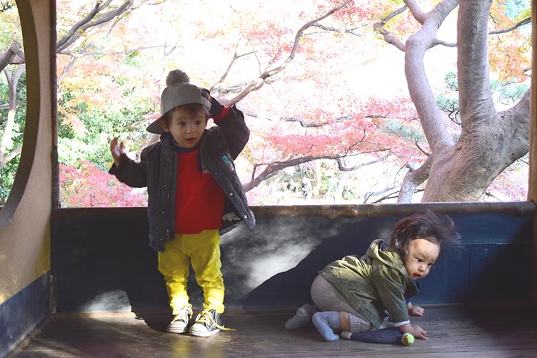 八芳園,東京,紅葉,紅葉スポット,小旅行,東京おすすめスポット,秋