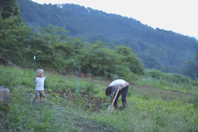 農業,いもほり,芋ほり,芋,じゃがいも,農業体験,自然,子育て,育児,山梨,暮らし