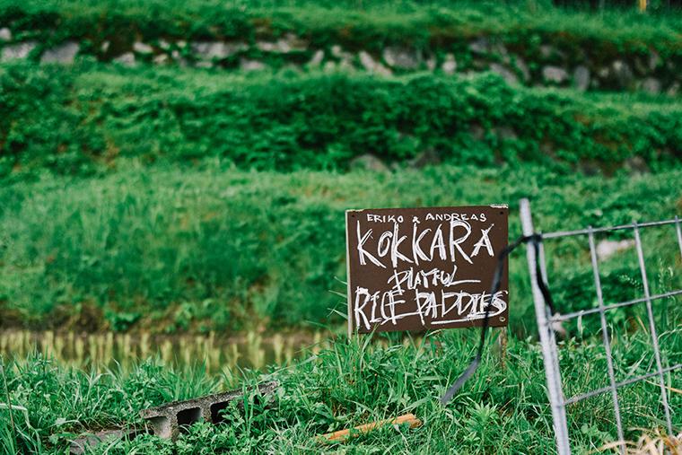 田植え,糸島,子育て,米,シェア農園,田んぼ,棚田オーナー制度