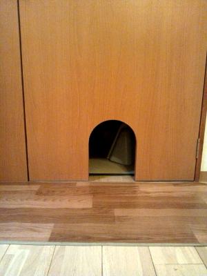 (株)建築士事務所民家 猫カフェ猫の箱の画像