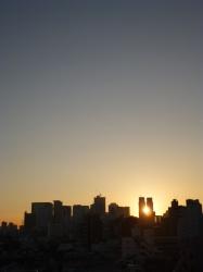 都庁の間からの朝日☆16-11-18