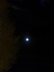 満月、青梅街道☆16-12-14