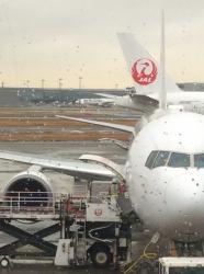 雨の羽田空港☆16-12-27