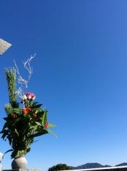墓参り☆16-12-30