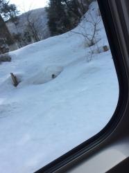 山形ロケ、車内からの雪国☆17-3-4