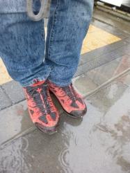 雨の日に登山靴2☆17-10-22