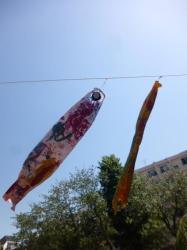 本町公園、鯉のぼり、そよ風☆18-5-5