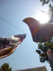 本町公園、泳ぐ鯉のぼり☆18-5-5