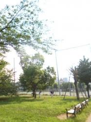 本町公園、朝の練習風景☆18-7-22