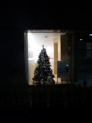 クリスマスツリーシルエット、セブン隣りのショーウィンドウ☆18-11-3
