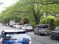 駐車OK地帯、土日休日☆19-4-27