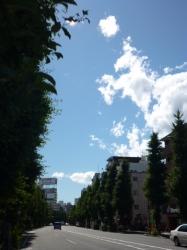気持ちいい青空と白い雲、青梅街道☆19-6-16