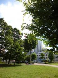 久しぶりの日差し、本町公園☆19-7-8