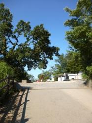 高尾山、頂上手前の坂☆19-8-8