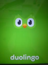 Duolingoスタート画面☆20-5-27
