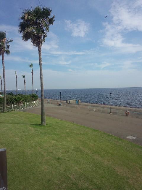 釣果 鳴尾 浜 鳴尾浜海釣り公園釣果 初心者におすすめやポイントとコツの情報をご紹介!|釣りパ
