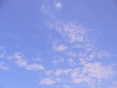 2010601 002.JPG