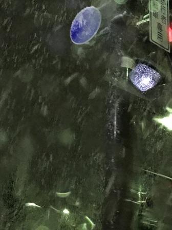 雪だらけ♪