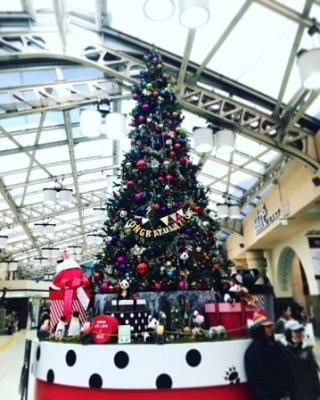上野パンダまみれクリスマス♪