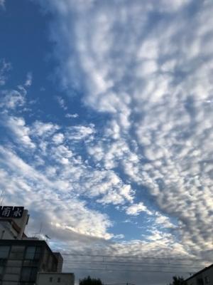 2019お正月の空♪ (1).jpg